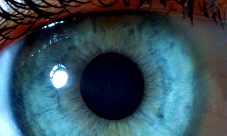 A-close-up-of-the-iris-of-001